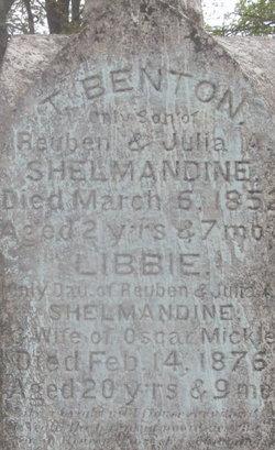 T Benton Shelmandine