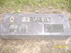 Helen Brush