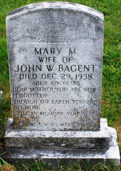 Mary M Bagent