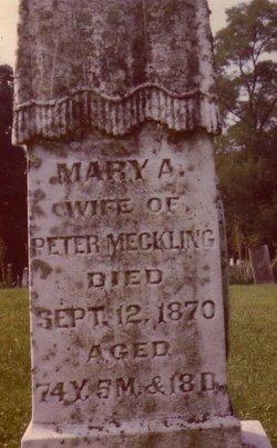 Mary A Polly <i>Downour</i> Mechling