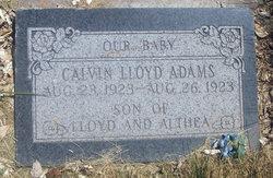 Calvin Lloyd Adams