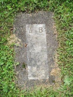 Andrew R Bankus
