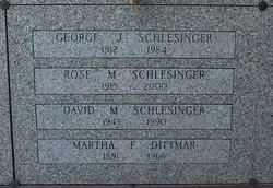 David Michael Schlesinger