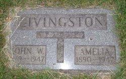 Amelia Livingston