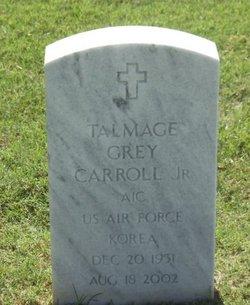 Talmadge Grey Tiny Carroll