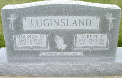 Albert F Luginsland