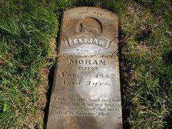 Elijah Moran