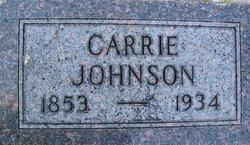 Carrie <i>Halvorson</i> Johnson