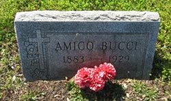 Amico Bucci
