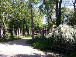 Alter S�dfriedhof M�nchen