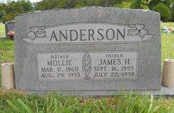James Hamilton Anderson