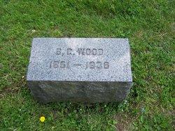 Burr Gene Wood