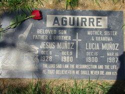 Jesus Munoz Aguirre
