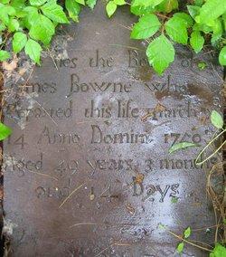 James Bowne, III