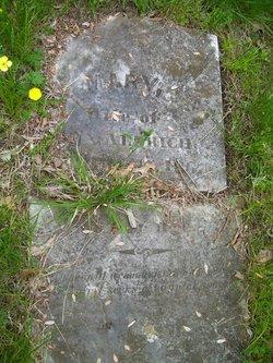 Mary <i>Wilmarth</i> Aldrich
