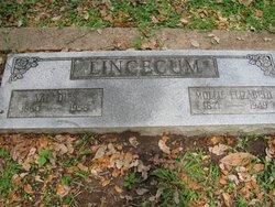 Mary Elizabeth Mollie <i>Murray</i> Lincecum