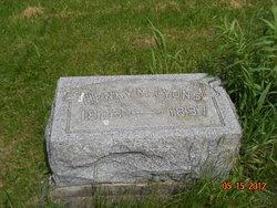 Henry Merrit Lyons