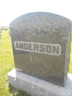 Johanna Matilda Louisa <i>Carlson</i> Anderson