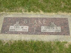 Leo M Blake