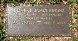 Delbert James Adkins