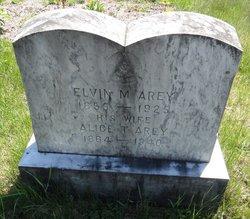 Elvin M. Arey