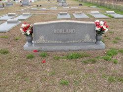 John A Borland, Sr