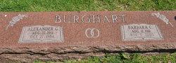 Alexander G Burghart