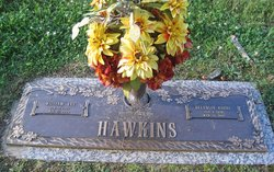 Belangia <i>Hobby</i> Hawkins