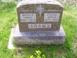 Anton Adams