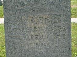 John Alfred Bosley