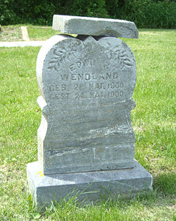 Edwin H Wendland