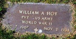 William A Hoy