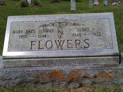 James A. Chimney Jim Flowers, Jr
