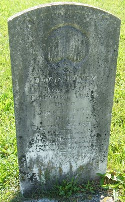 David Arney