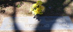 R Evelyn Clark