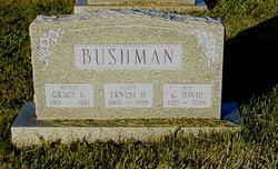 George David Bushman