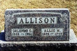 Orlando G Allison