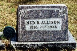 Ned B. Allison