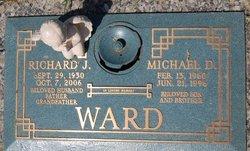 Richard J Ward