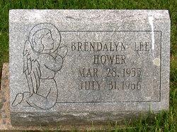 Brendalyn Lee Hower