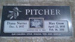 Max Grow Pitcher