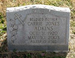 Carrie J. Adkins