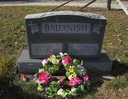 John Badanish