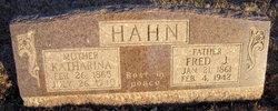 Johann Friedrich Fred Hahn
