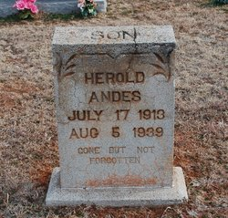Herold Andes