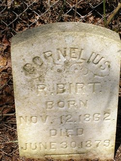 Cornelius R Birt