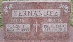 Premelia D Fernandez