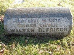 Walter O Frisch