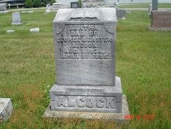 Bertha Alcock