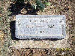 J. W. Gonser